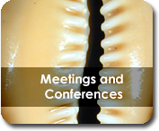 Malacological Society Meetings and Conferences